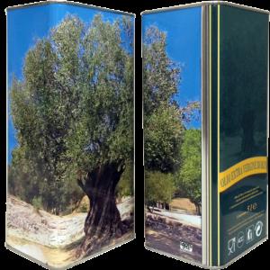 lt5-albero